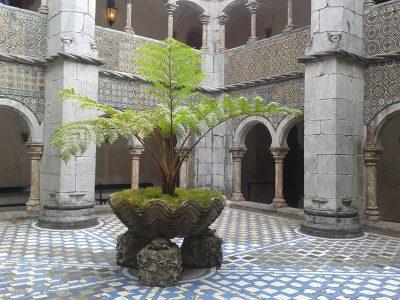 Oddih, samota, Portugalska