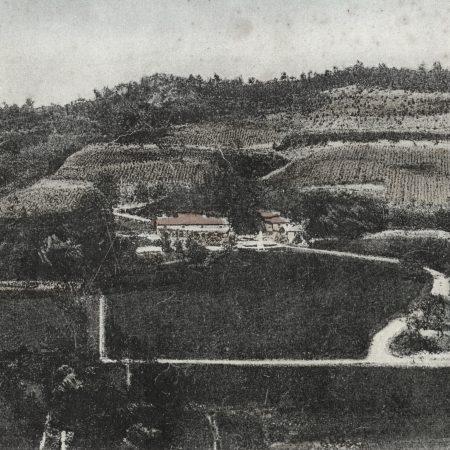 vinogradi nad Dolanci
